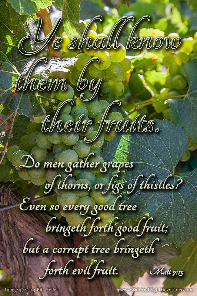 Known By Their Fruits