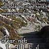 Fear Not IMG 122205
