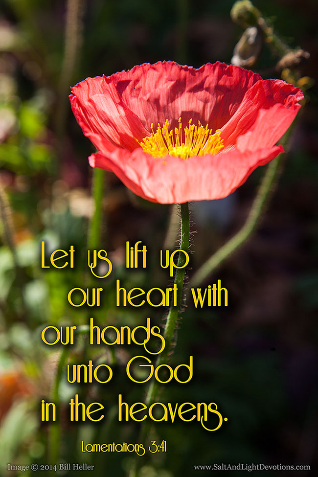 Lift Up Our Hearts