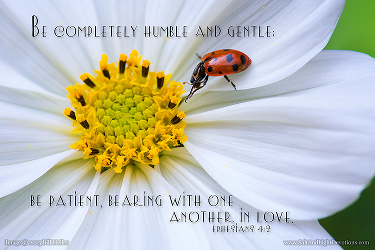 Be Humble and Gentle