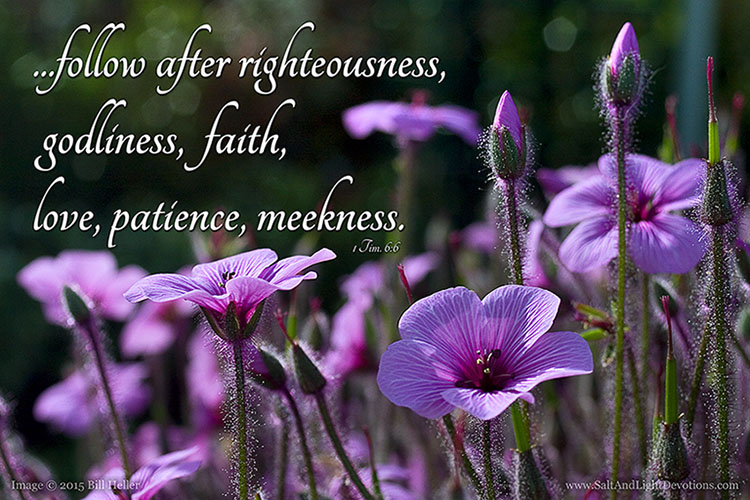 Follow After Righteousness