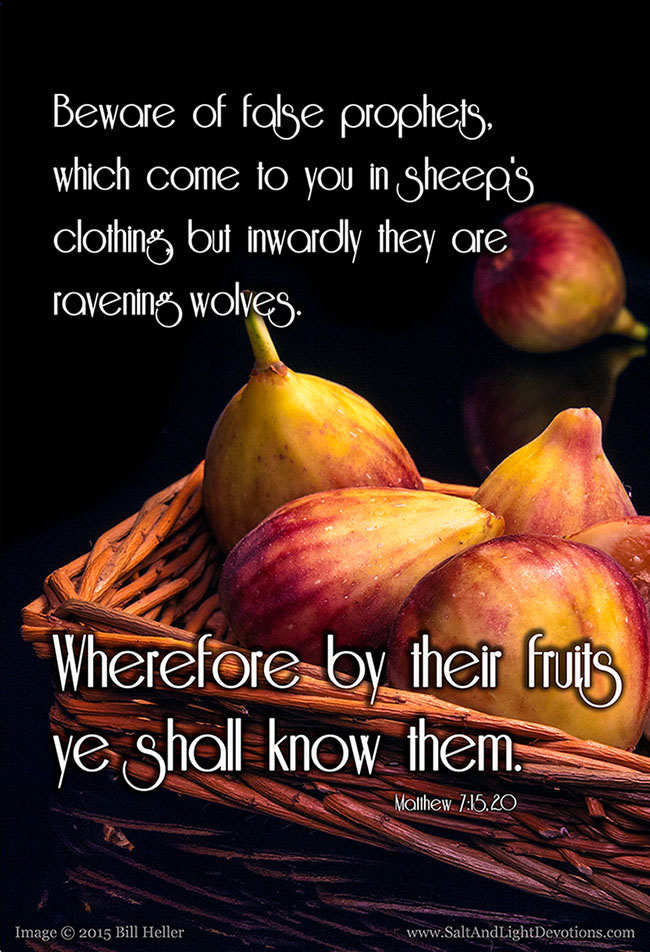 By Their Fruit