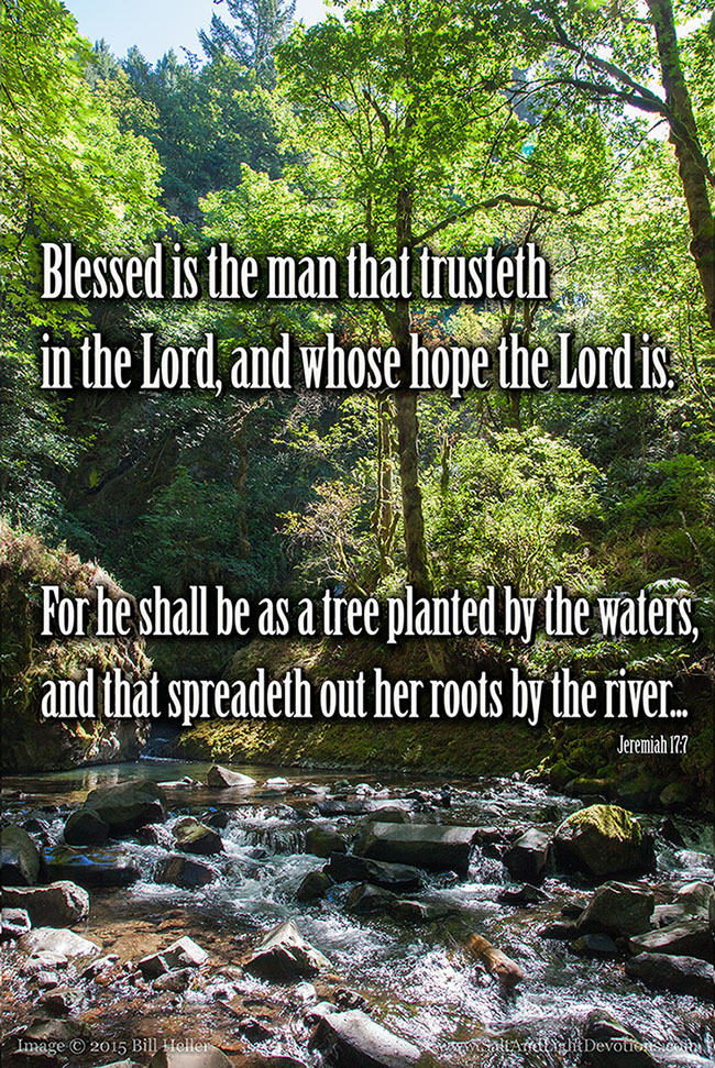 As A Tree Planted By The Waters