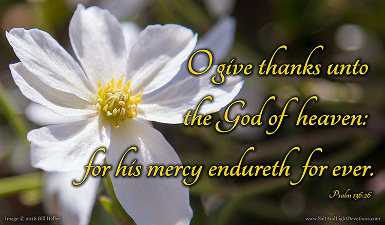 His Mercy Endureth For Ever