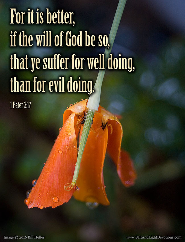 Suffer For Well Doing