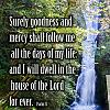 Surely Good And Mercy Will Follow Me