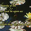 Sunday, November 4, 2018 - The Beauty Of The Lord