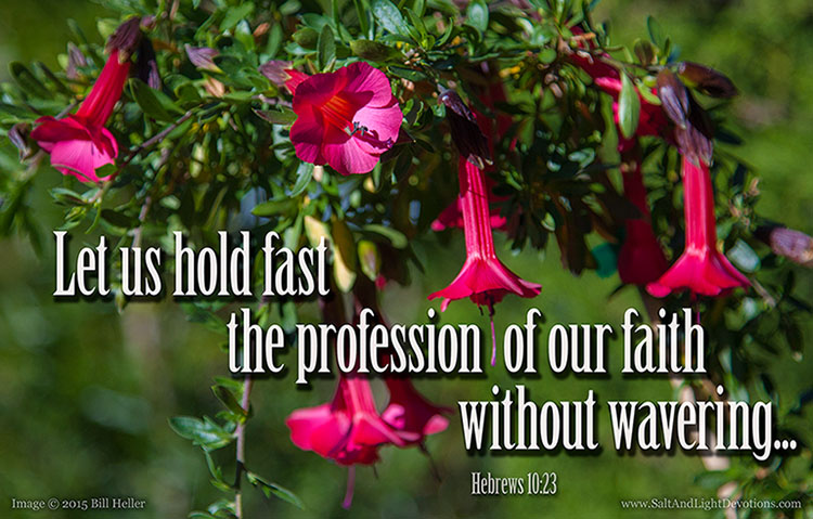 Hold Fast To Your Faith