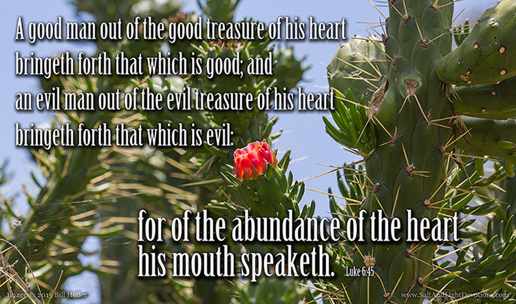 Out Of The Treasure Of His Heart