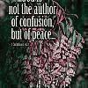Author Of Peace