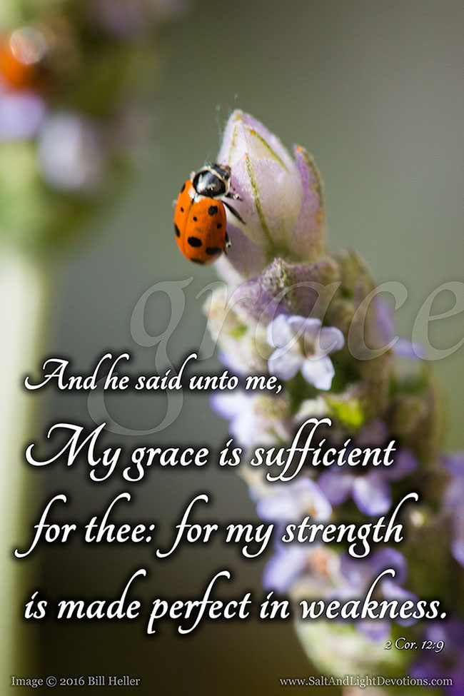 My Grace Is Sufficient For Thee