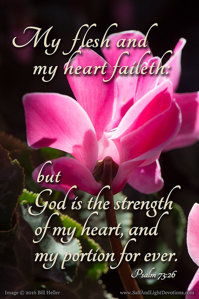 Strength Of My Heart