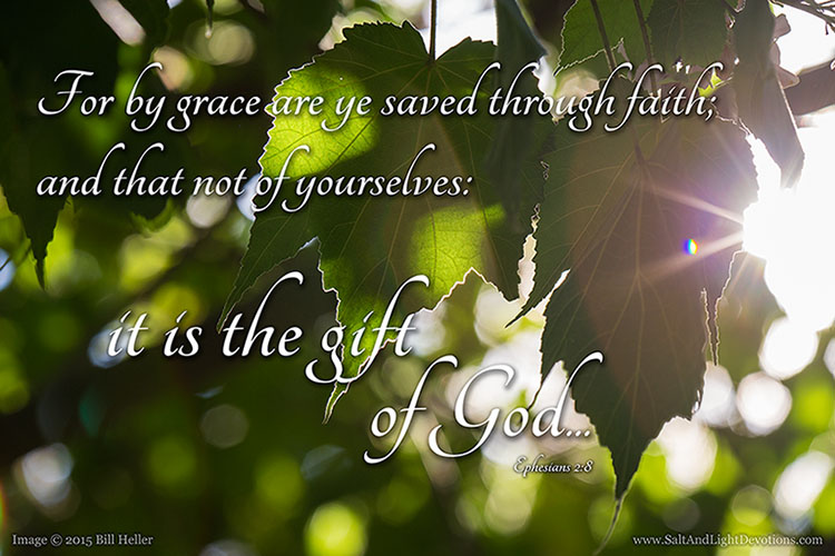 By Grace Are Ye Saved