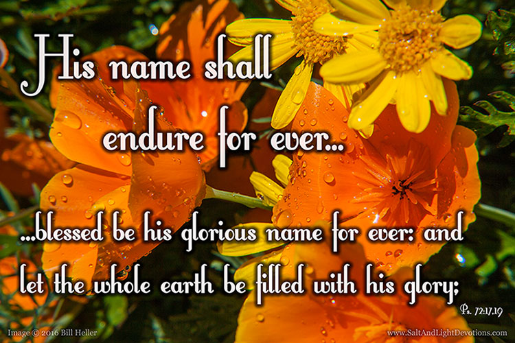 Blessed Be His Glorious Name
