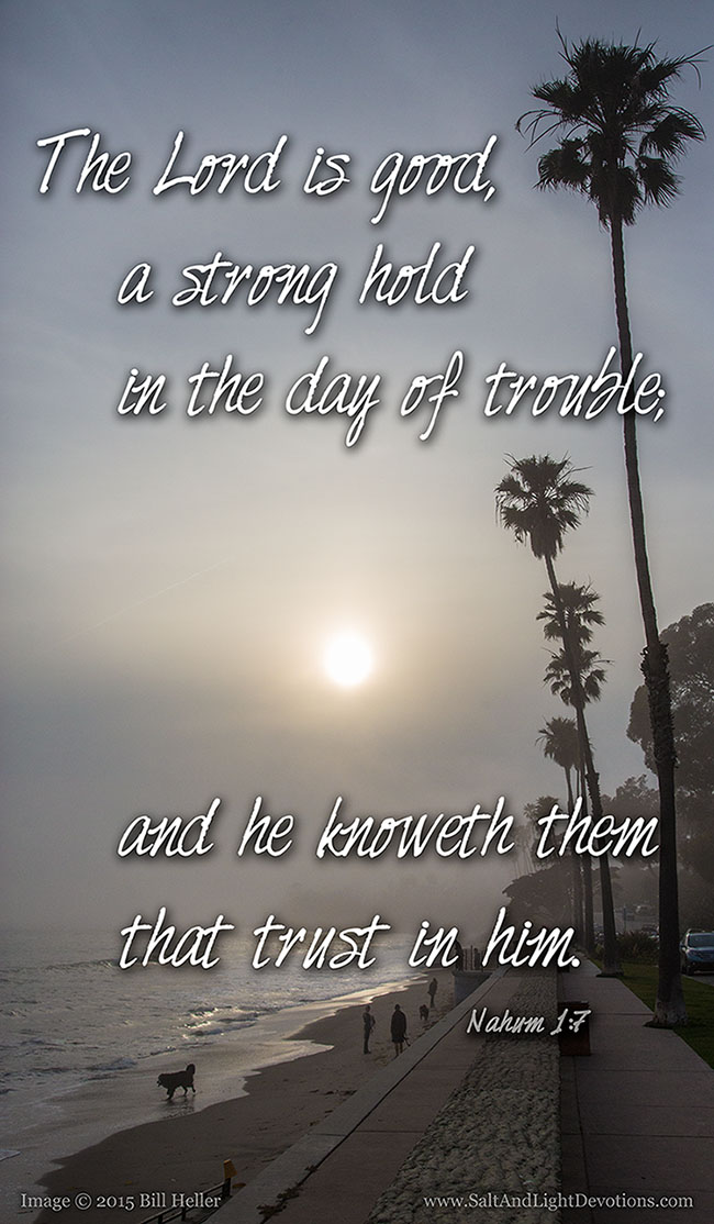 A StrongHold In The Day Of Trouble